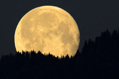 У вас есть возможность воспользоваться нашим лунным календарем