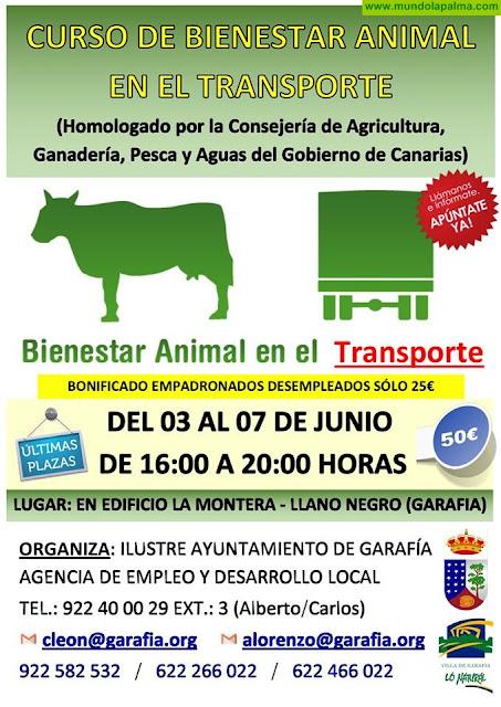 Curso de Bienestar Animal en El Transporte en Garafía