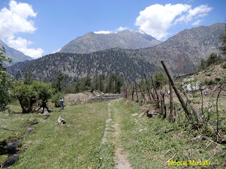 Dharali Sattal Trek Gangotri All Information