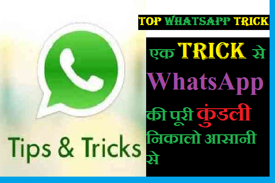 Lovely whatsapp tricks in hindi, hidden whatsapp tricks in hindi, secret whatsapp tricks in hindi