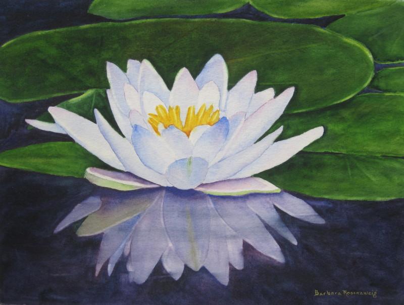 Artist Barbara Rosenzweig's Blog: Art, Gardening ...