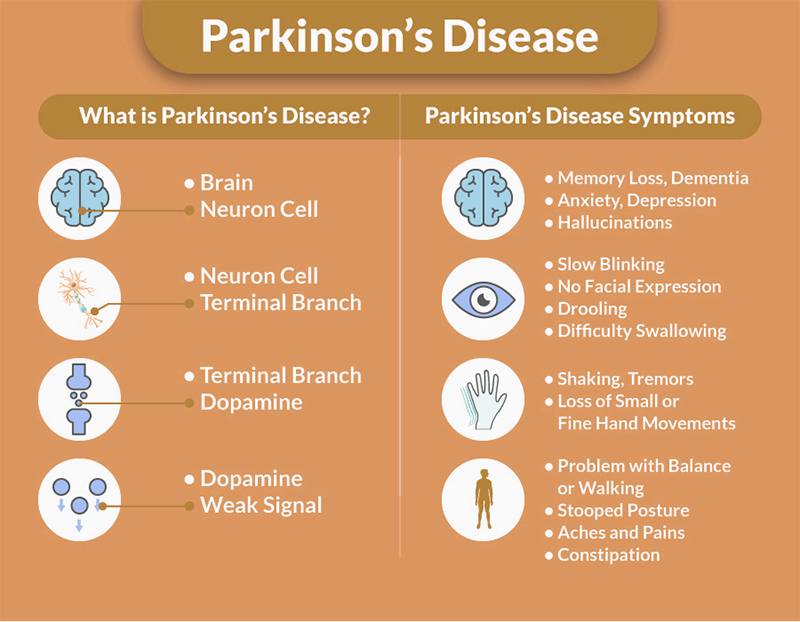 Helps with Parkinson's Disease