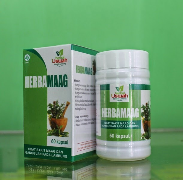 obat maag kronis herbamaag