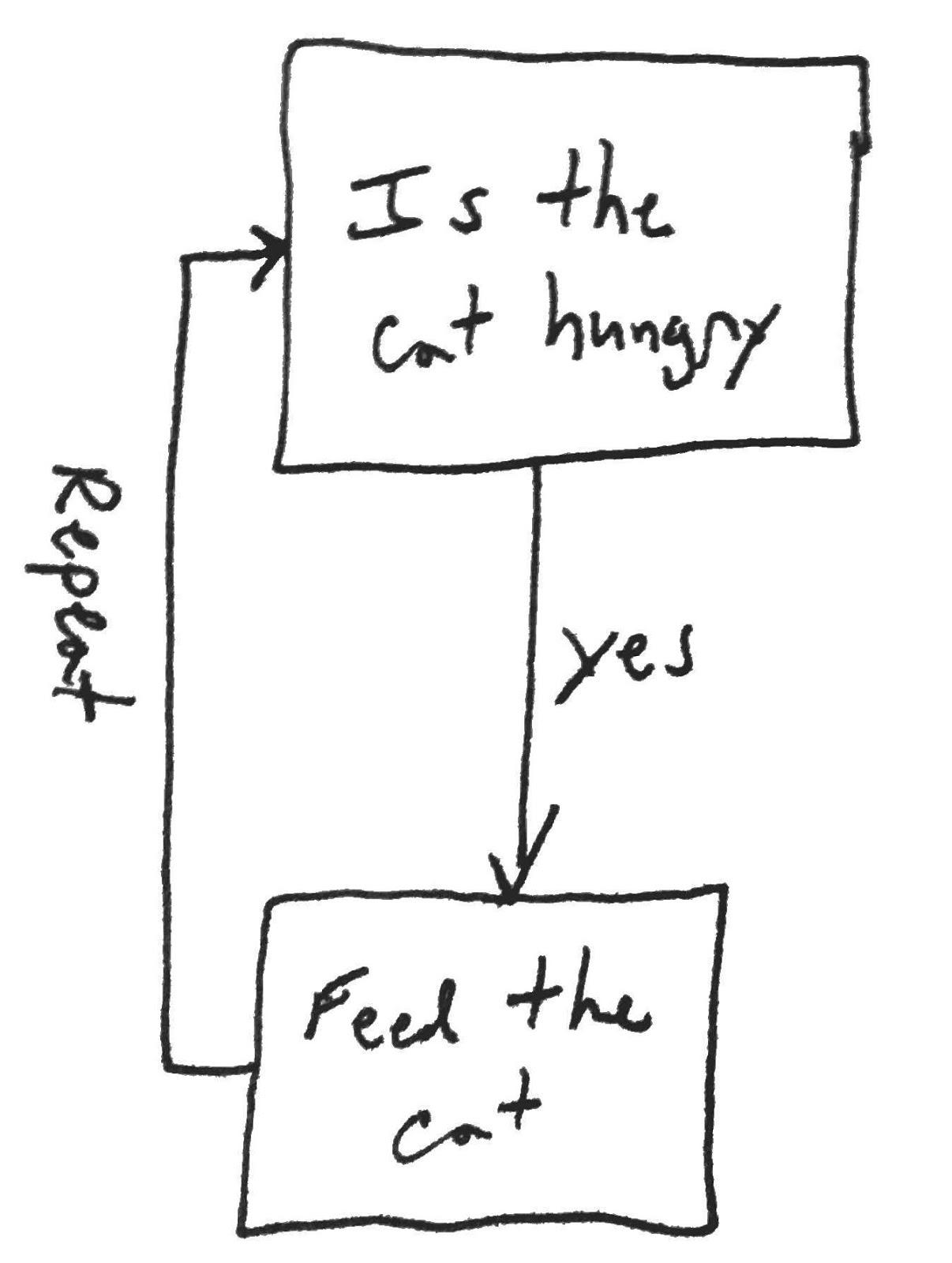 Zbjoux Cat Feeding Flow Chart