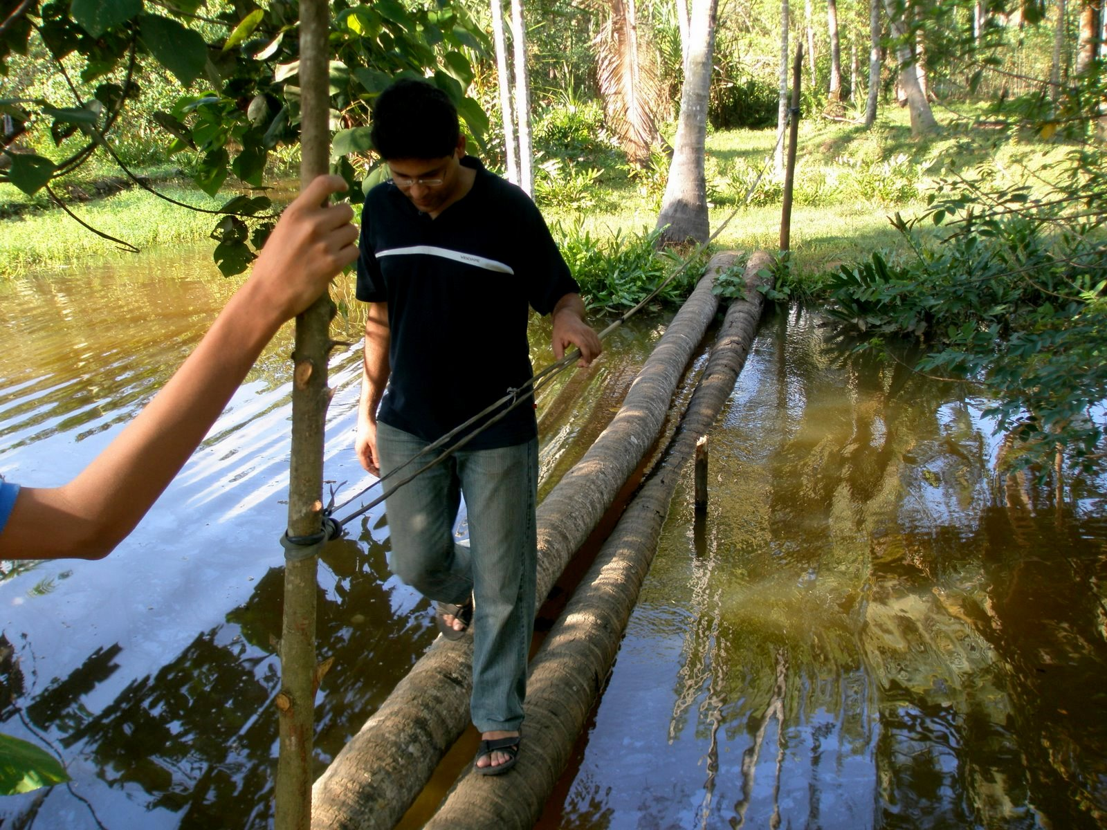 Image result for coconut tree trunk as bridge in kerala