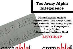 Tips Rahasia dan Contoh Soal Tes Army Alpha Intelegence dengan Pembahasan + Army Alpha Test Download PDF