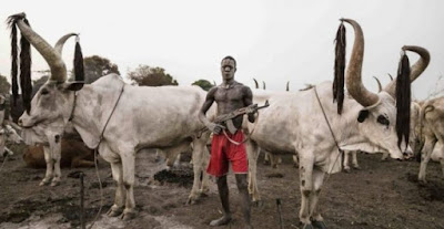 Fulani Herdsmen hack two soldiers to death, remove private parts in Benue state