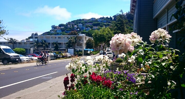Summer days biking to pretty Sausalito