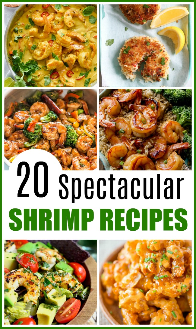 20 Spectacular Shrimp Recipes- Shrimp are an inexpensive and fast cooking protein, making them a delicious choice for busy days. Here are 20 quick and easy shrimp recipes! | food, cooking, dinner, lunch, easy recipes for busy moms, seafood, what to make with shrimp, cooking with frozen shrimp, fast dinner ideas