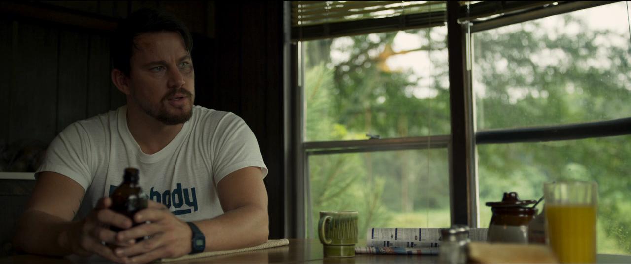 La Estafa de los Logan (2017) BRRip 720p Latino – Ingles captura 2