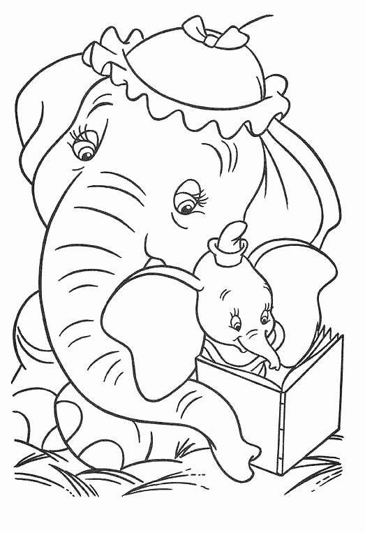 Tranh tô màu hai mẹ con chú voi đọc sách