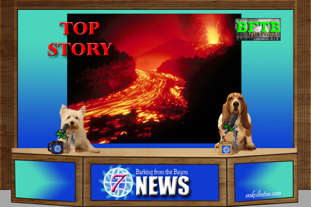 BFTB NETWoof News anchored by two dogs