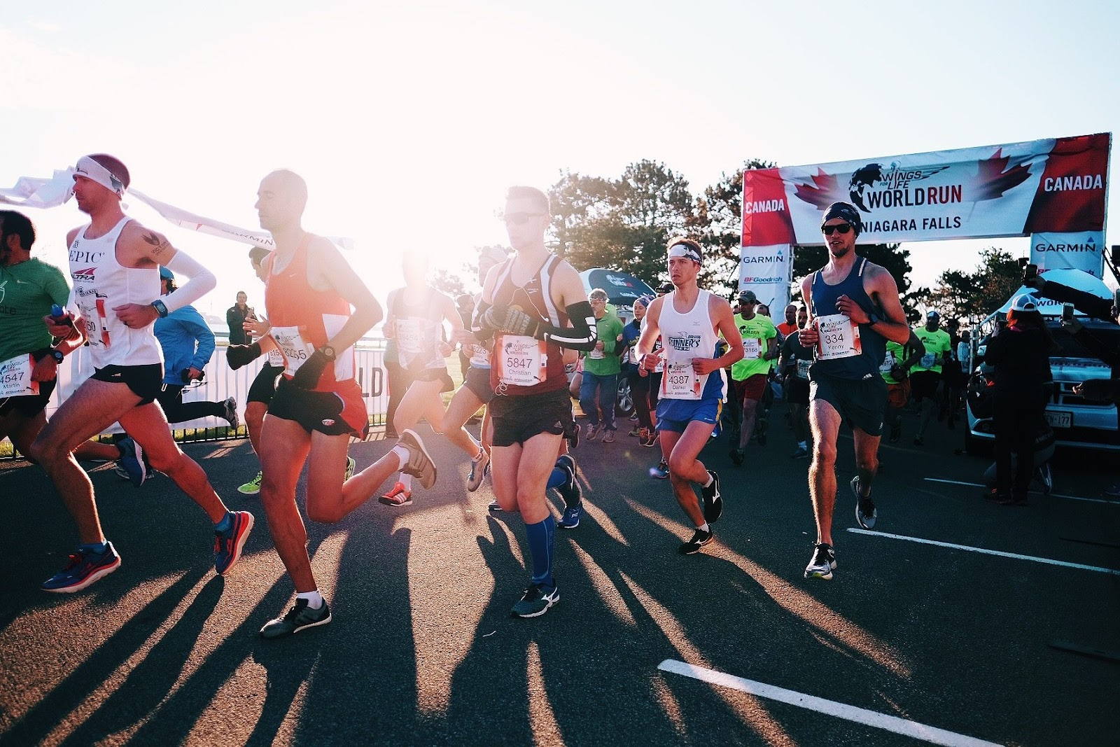 the dnf wings for life world run 2016