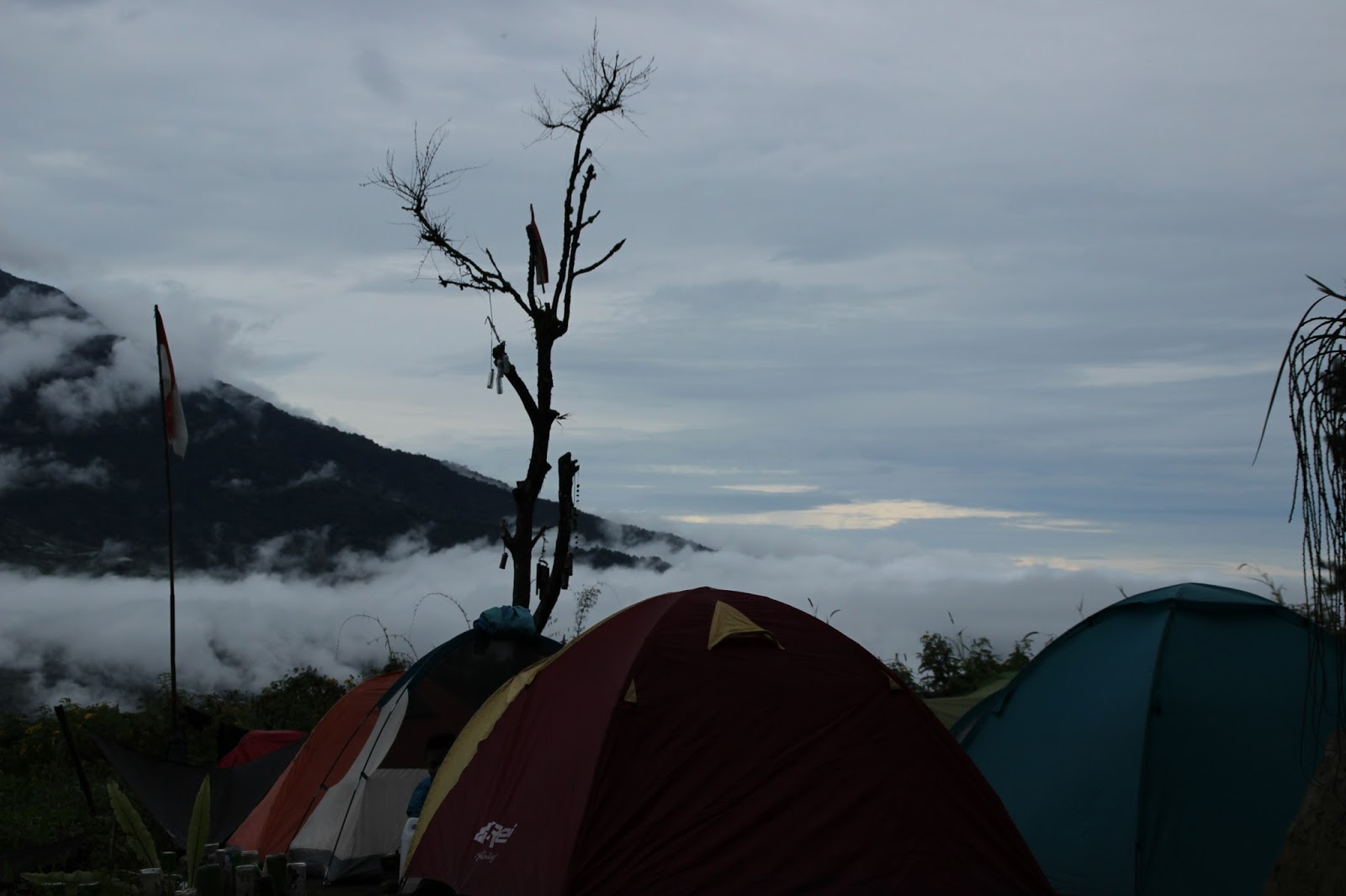 Catatan Perjalanan Pendakian Gunung Marapi Sumatera Barat