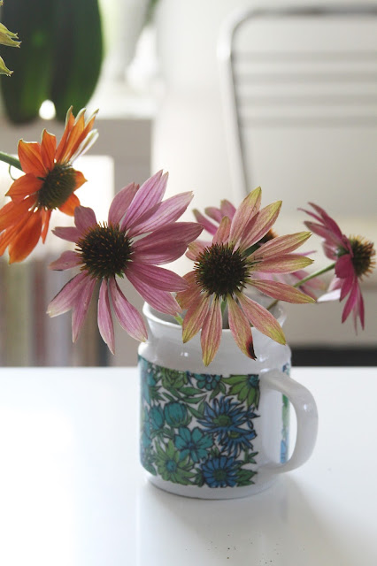 coneflowers, echinacea, vintage mug, summer flowers, studio, Anne Butera, My Giant Strawberry