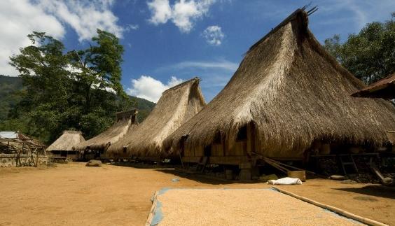 contoh rumah tradisional berbahan atap rumbia