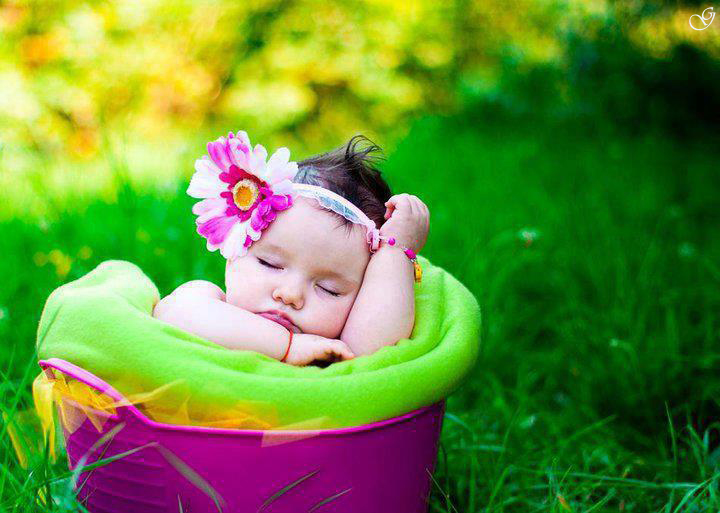Cute Babies Sleeping Images: Babies Pictures: Cute Babies Sleeping In Basket Pictures