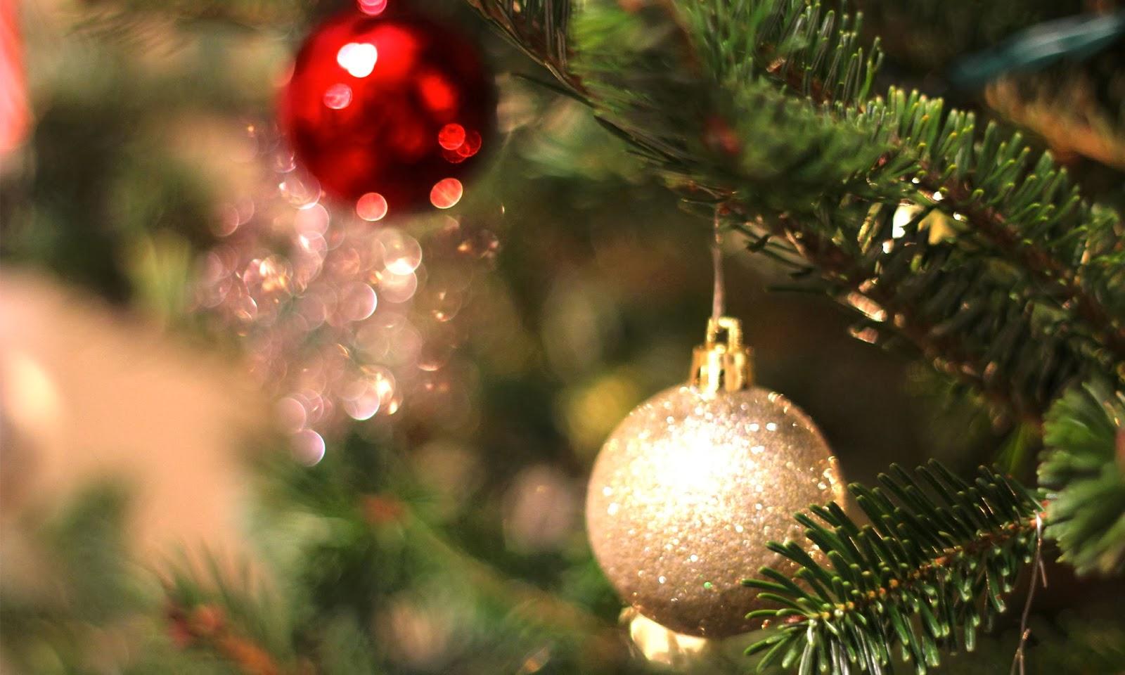 Christmas Photography Hd Wallpapers Hd Wallpapers High