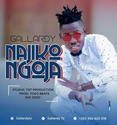 Download Mp3 | Gallard - Najikongoja