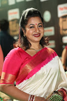 Radhika Sarathkumar (8).JPG