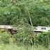 Ônibus escolar cai em ribanceira no interior da Bahia