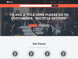 Theme Zerius