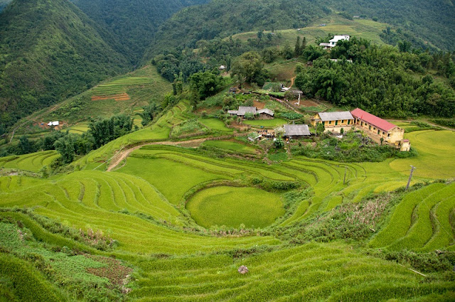What is Ta Van Village in Sapa?