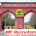 JRF Recruitment in Punjab Agricultural University