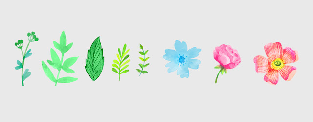 Watercolor floral elements freebie