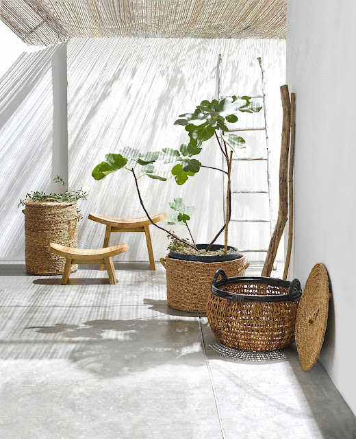 Scandimagdeco le blog tendance d co urban jungle for Support de plantes d interieur