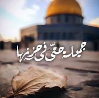 قصيدة عن القدس قصيرة جديدده   جميلة حتى في حزنها صور جديده عن القدس