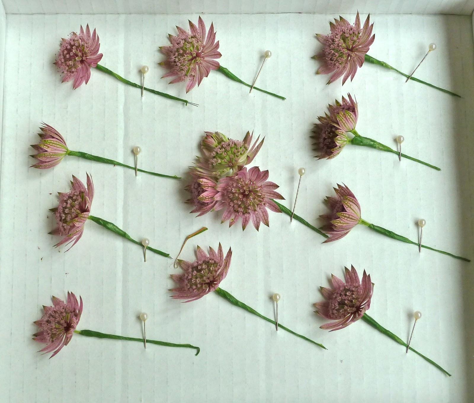 Wedding Flowers Cheltenham: September Wedding Flowers, Cotswold Wedding Flowers And