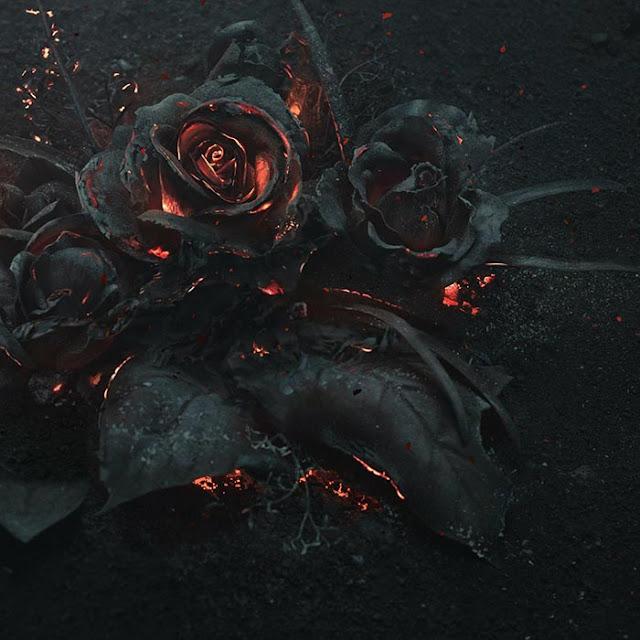 Burned Roses Wallpaper Engine
