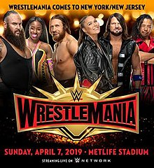 WWE Wrestlemania 35 poster