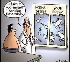 foto sperma normal yang bisa membuahi