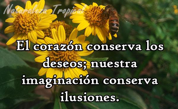 El corazón conserva los deseos; nuestra imaginación conserva ilusiones.