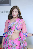 Angela Krislinzki Rogue Movie Fame Telugu Actress in Saree Backless Choli 066.JPG