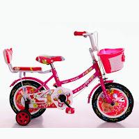 12 asagi sepeda anak