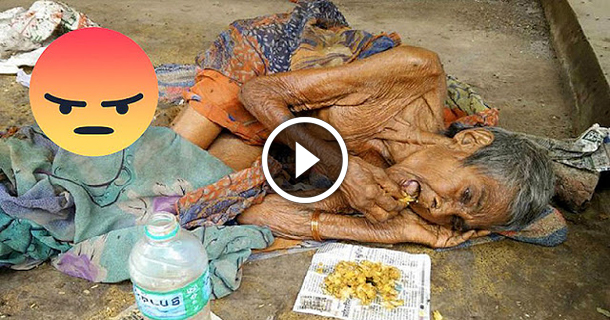 Her Family Threw Him Into The Street To Die, But A Noble Soul Rescued!