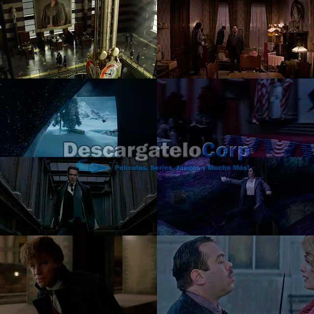 Animales fantásticos y dónde encontrarlos (2016) DVDRip Español Latino