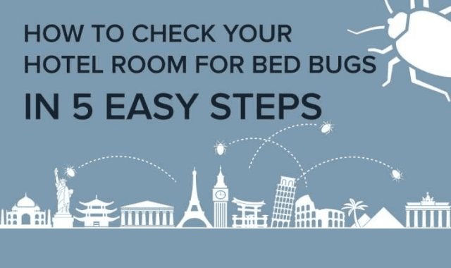How to Check Your Hotel Room for Bed Bugs