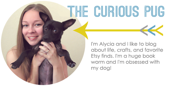 The Curious Pug