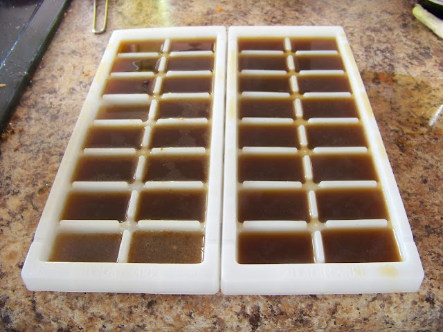 Chicken stock in ice cube trays for freezing
