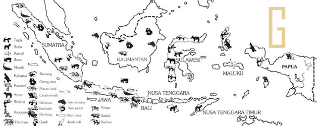Pembagian Hewan (Fauna) di Indonesia