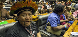 Sin indígenas no hay selva