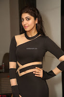 Pranitha Subhash in a skin tight backless brown gown at 64th Jio Filmfare Awards South ~  Exclusive 169.JPG