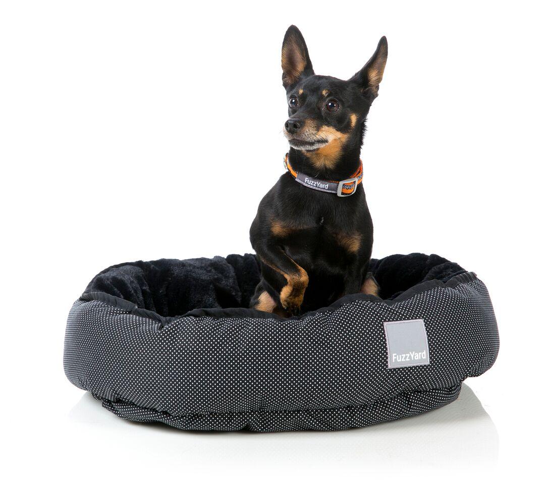 hundezubeh r f r kleine und gro e hunde fashion and lifestyle for dogs. Black Bedroom Furniture Sets. Home Design Ideas