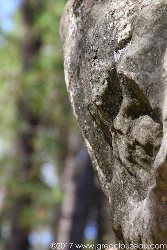 Profil masqué, Cul de chien