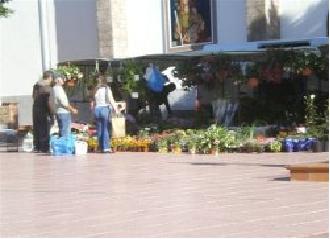 El Ayuntamiento reactiva los mercadillos de Ingenio y Carrizal