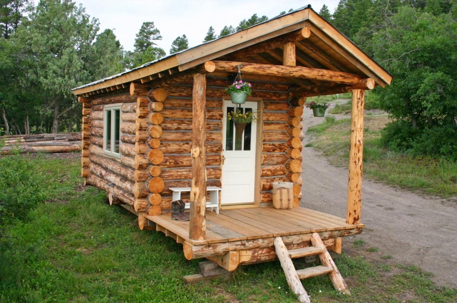Tiny House Log Cabin